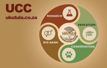 The four pillars of UCC